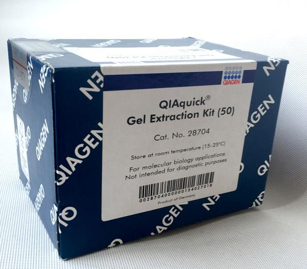 现货 QIAquick Gel Extraction Kit (50)